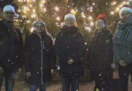 God jul och gott nytt år Finlandssvenska teckenspråkiga rf styrelse