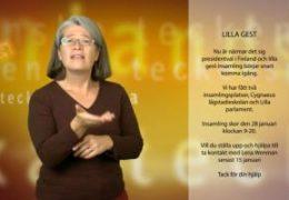 Lilla gest – presidentval - Lena Wenman